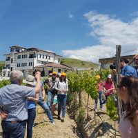 Villa Melnik Winery Tourism Bulgaria