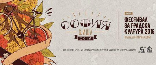 sofiadisha2