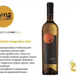 Villa Melnik Orange Wine, Оранжевото вино на Вила Мелник в ТОП 20 Български вина!