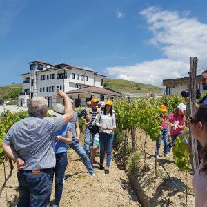 Bacchus Magazine Wine Day Villa Melnik