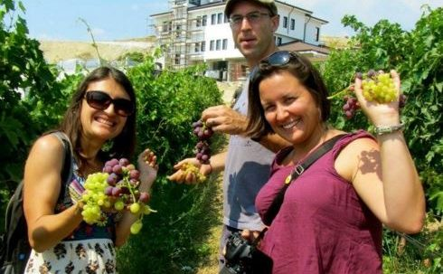 Villa Melnik доброволци гроздобер